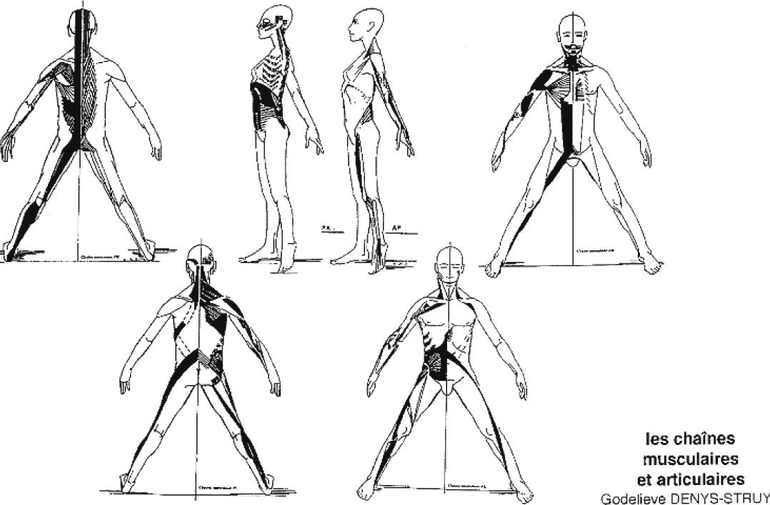 chaine musculaire bruay la buissiere